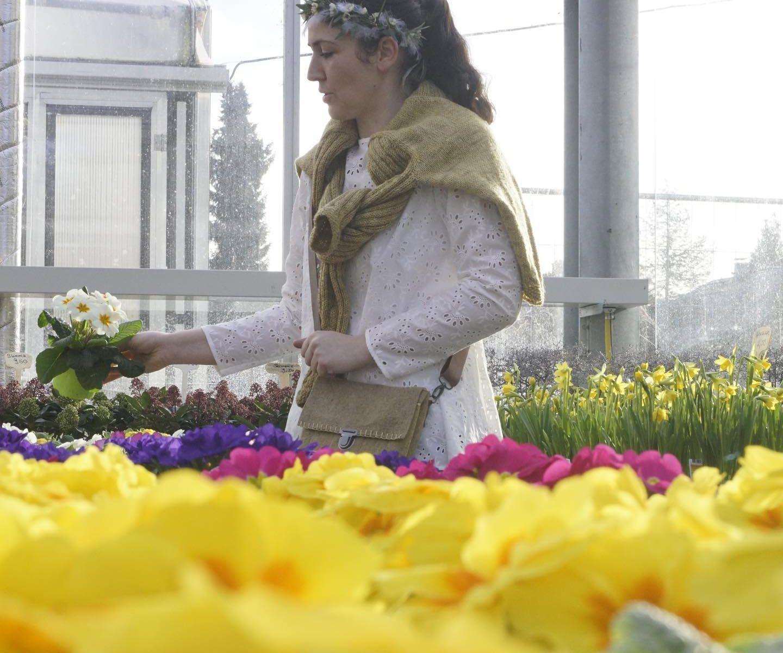 Wunsch nach Frühling, Farbe, Wärme....